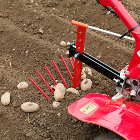 Versatile tiller with potato lifter attachment, garden location.